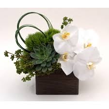 Orchid Delivery Top Rated Orchid Delivery In Nyc Gabriela Wakeham