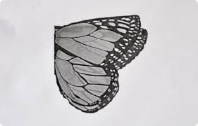 no sew butterfly wings
