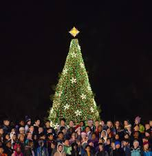tree lighting ceremony lotterychristmas when