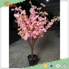 miniature cherry tree bosai mini cherry blossom tree original