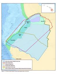 Uh Manoa Map Dominant Benthic Structure And Biological Cover Habitat Maps For