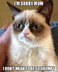 I Am Sorry Meme - i m sorry mom i don t mean to be so grumpy grumpy cat make a meme