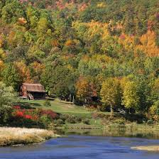 Cottages That Allow Dogs by Pet Friendly Cabins In The Mountains Of Pennsylvania Usa Today