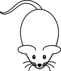 mouse smaller ears clip art clker vector clip art