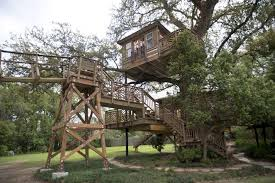 raising cane u0027s owner reflects on his new treehouse the daily