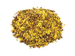 ground mustard mustard seeds ground mustard seeds savory spice