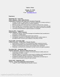 Administrative Officer Sample Resume Racial Profiling Pros And Cons Essays Do The Write Thing Essay