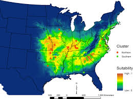 Giant Map Giant Stag Beetles Ecology Genetics And Distribution The