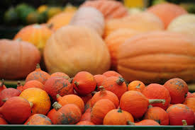 best pumpkin dishes in sacramento cbs13 cbs sacramento