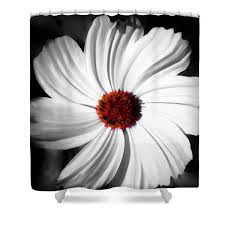 Red And Black Bathroom Accessories by Cosmos Floral Shower Curtain Designer Shower Curtain Floral