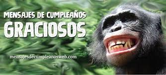imagenes chistosas sin groserias frases y mensajes de cumpleaños graciosos 100 originales