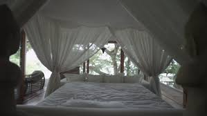 Forest Canopy Bed Sleeping Girl Wakes Up Romantic Bed Under The Canopy Bedroom In