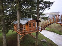 instagram superstar builds childhood dream treehouse