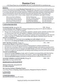 Resume Format For Web Designer Web Designer Resume Is A Main Key To Be Accepted As A Web Designer