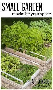 1820 best gardening images on pinterest organic gardening
