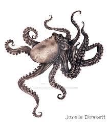 octopus graphite drawing updated by janelle dimmett on deviantart