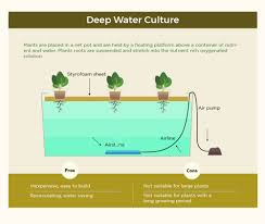 infographic the art of hydroponic gardening recoil offgrid