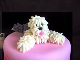 birthday cakes dog design u2014 wow pictures birthday cakes for dogs