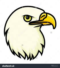 drawing a bald eagle bald eagle drawing free coloring page for