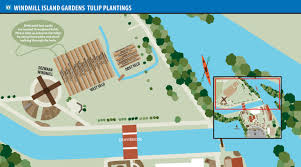 Map Of Holland Michigan by 2017 Annual Tulip Dig Scheduled For May 20 City Of Holland