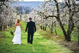 cheap wedding venues in oregon oregon destination weddings in southern oregon