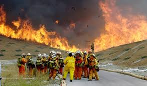 Wildfire Deaths Per Year by To Redeem Their Honors Over 200 California Female Prisoners Fight