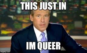 Queer Meme - brian williams was there meme imgflip