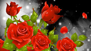 Picture Of Roses Flowers - red flower wallpapers phone natures wallpapers pinterest