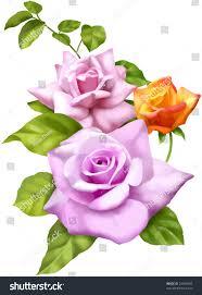 Beautiful Flowers Image Beautiful Flowers Design Stock Illustration 26446042 Shutterstock
