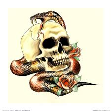 cool 3d skull with snake and roses design