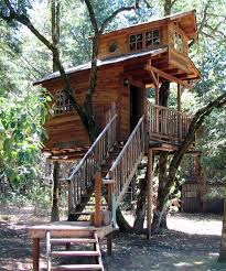 the top 10 coolest family vacation spots stay in a treehouse
