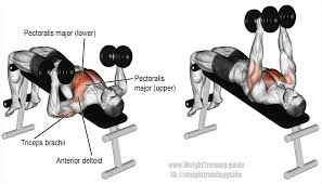 decline hammer grip dumbbell bench press instructions and video