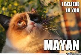 Good Luck Cat Meme - grumpy cat prays for the apocalypse by averis007 meme center