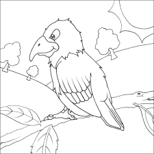 parrot coloring printable