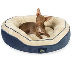 Kong Dog Beds Pet Supplies Big Lots