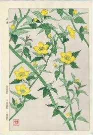 Japanese Flower Artwork - 38 best japanese flowers images on pinterest japanese flowers