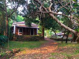 19 best goa homestays images on pinterest goa renting and mansions