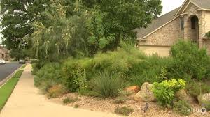 native central texas plants reduce the lawn garden makeover russell womack central texas