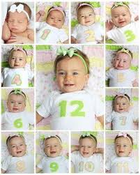 baby photo album 9 best baby s 1st year album ideas images on 1st year