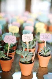 creative wedding favors succulents for wedding favors creative wedding ideas that wont
