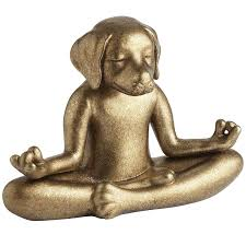 pier one home decor yoga dog pier 1 imports