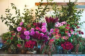 babylon flowers u2013 lovers of mother nature
