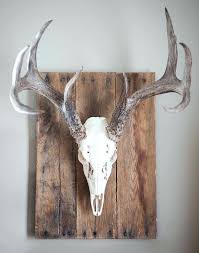 decorative wall antlers decor diy deer antler idea
