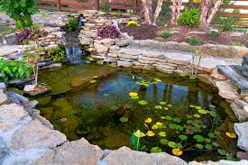 koi pond design construction in independence kansas city area
