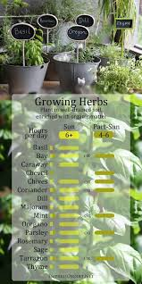 herb growing chart growing herbs in sun and shade growing herbs herbs and chart