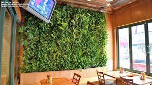 gallery plants on walls