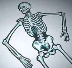 43 vintage skeleton halloween door decorations halloween