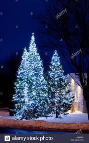 lights on trees lights decoration