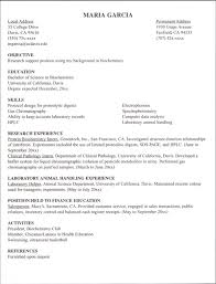 internship resume examples resume example and free resume maker