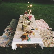 Backyard Picnic Ideas Dinner Outside In The Country Photo By Justinmichau A Cottage